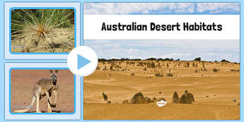Australian Desert Habitat Photo PowerPoint - australia, Science, Habitats, Australian Curriculum, Desert, Living, Living Adventure, Good to Grow, Ready Set Grow, Life on Earth, Environment, Living Things, Animals, Plants, Photos, Photographs, PowerPo