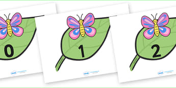Numbers 0-20 on Butterflies - Foundation Numercy, Number recognition, Number flashcards, Minibeasts, Butterfly resource