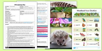 Woodland Walk EYFS Adult Input Plan and Resource Pack - woodland walk, eyfs, adult, input, plan, resource, pack