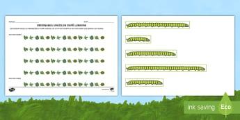 Ordonarea omizilor după lungime Activitate - unități de măsură, măsoară, cm, m, km, lungime, mai mare, mai mic, compară, ordonează după