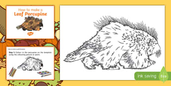 Leaf Porcupine Craft Instructions