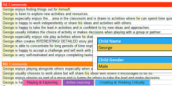 Report Writing Bank of Differentiated Statements EYFS Characteristics of Effective Learning