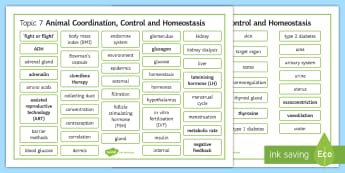Edexcel Biology Animal Coordination, Control and Homeostasis Differentiated Word Mat - Word Mat, edexcel, gcse, coordination, hormone, hormones, homeostasis, thermoregulation, diabetes, g