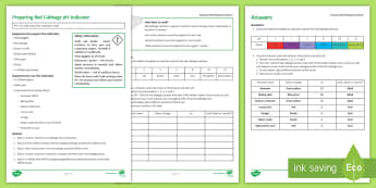Preparing Red Cabbage Indicator Investigation Instruction Sheet Print-Out - Investigation Help Sheet, science practical, method, instructions, pH, acids and alkalis, acid, alka
