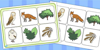 Owl Babies Matching Cards and Board - owl babies, owl babies picture matching game, owl babies image boards, owl babies matching cards, sen storybook game
