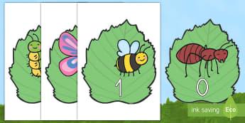 Números de exposición: Del 0 al 30 en bichos números de exposición - bichos, números de exposición, mates, matemáticas, gusano, hormiga, mariposa, araña, mariquita,