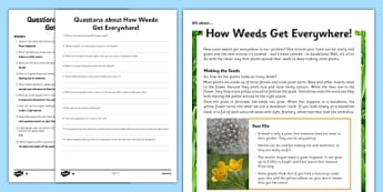 Y3 Seeds and Weeds Differentiated Reading Comprehension Activity