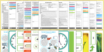Adult Input Planning and Resource Pack to Support Teaching on The Bad-Tempered Ladybird-Australia - The Bad Tempered Ladybird, planning pack, plan, assess, adult led, games, activities, ideas, minibea