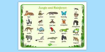 Jungle & Rainforest Word Mat - Jungle, Rainforest, word mat, writing aid, vines, A4, display, snake, forest, ecosystem, rain, humid, parrot, monkey, gorilla