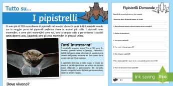 I Pipistrelli Lettura Comprensiva - pipistrelli, lettura, comprensiva, domande, leggere, individuale, indipendente, abilita, italian, it