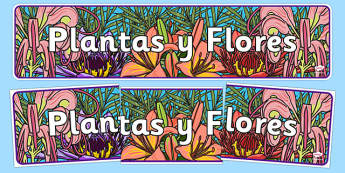 Plants and Flowers IPC Display Banner Spanish - spanish, plants and flowers, IPC display banner, IPC, plants and flowers display banner, IPC display