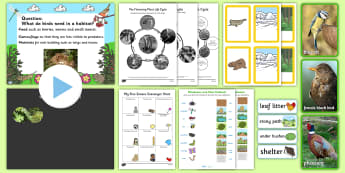 Harewood House Teach Event Pack  Activity Pack - Twinkl Teach Event Resources