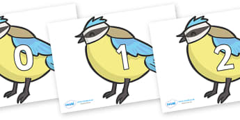 Numbers 0-31 on Birds - 0-31, foundation stage numeracy, Number recognition, Number flashcards, counting, number frieze, Display numbers, number posters