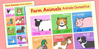 Farm Animals Display Poster Romanian Translation - romanian, farm