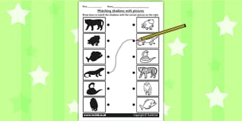 Jungle Shadow Matching Worksheet - shadows, silhouettes, match