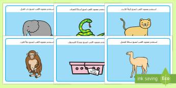 نشاط معجون اللعب حديقة الحيوانات - عربي، حديقة الحيوان، الحيوانات، معجون اللعب،أوراق عمل