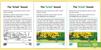 NI Linguistic Phonics Stage 5 and 6 Phase 3b, 'h, wh' Sound Activity Sheet - Linguistic Phonics, Phase 3b, Northern Ireland, 'h', 'wh' sound, sound search, text, Worksheet