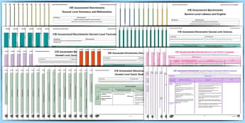 CfE Second Level Assessment Benchmarks Resource Pack - CfE Benchmarks, tracking, assessing, progression, numeracy, literacy, health and wellbeing, Science,