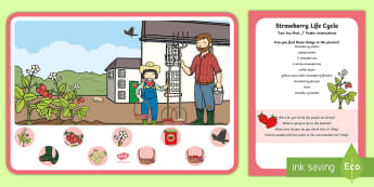 Strawberry Farm Can You Find...? Poster and Prompt Card Pack - strawberries, strawberry plants, strawberry farming, strawberry picking, strawberry plant life cycle