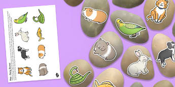 Pets Story Stones Image Cut Outs - Story stones, stone art, painted rocks, storytelling, animals