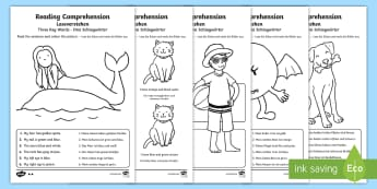 Reading Comprehension – Three Key Words Activity Sheets English/German - Reading comprehension, information carrying words, key words, follow instructions, worksheet, activi