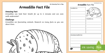 Armadillo Fact File - Amazing Fact Of The Day, activity sheets, powerpoint, starter, morning activity, March, armadillo, f