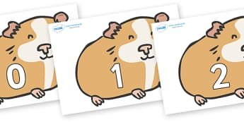 Numbers 0-100 on Guinea Pigs - 0-100, foundation stage numeracy, Number recognition, Number flashcards, counting, number frieze, Display numbers, number posters