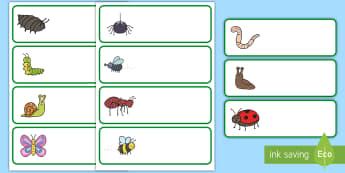 Etiquetas de perchero: Bichos - Bichos, insectos, nombres, indentificación, percha, cajón,
