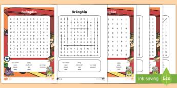 Bréagáin Differentiated Word Search Gaeilge - Gaeilge, Irish, toys, bréagáin, bréagán, caitheamh aimsire, hobbies,playing, ag súgradh,Irish