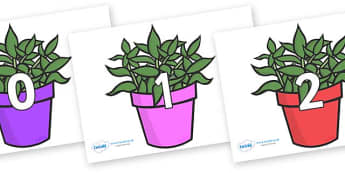 Numbers 0-31 on Plants - 0-31, foundation stage numeracy, Number recognition, Number flashcards, counting, number frieze, Display numbers, number posters