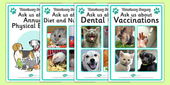 Vets Surgery Advice Display Posters - Vets, vet, photo, display poster, vet Surgery, pets, pet, role play, vets role play, vet, operation, xray, nurse, medicine, vaccine, bandage, cat, dog, rabbit