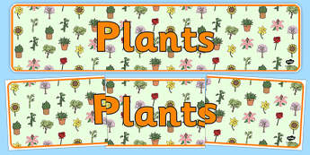 Plants Display Banner - plants banner, plants, green plants, living things, plants display, general plants display, plants display header, ks2 science