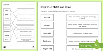Respiration Match and Draw - Match and Draw, respiration, aerobic, anaerobic, glucose, oxygen, lactic acid, oxygen debt, exercise