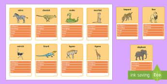 Safari Animal Card Game - animals, cards, card games