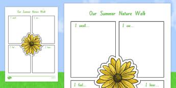 Our Summer Nature Walk Writing Frame - nz, new zealand, summer, writing, frame