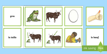 The Frog and the Ox Matching Cards French - KS2, French, Fables, Jean De La Fontaine, The Frog and the Ox, Snap Cards, Matching Cards,French