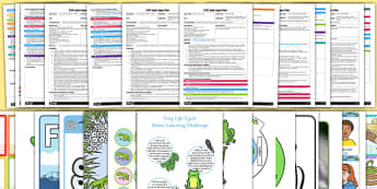 EYFS Life Cycle of a Frog Adult Input Planning and Resource Pack - EYFS, early years planning, adult led, pond dipping