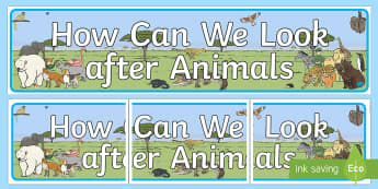 How Can We Look After Animals Display Banner  - Animals Display Banner - animals, dog, cat, cow, horse, rabbit, display, banner, sign, poster, pets,