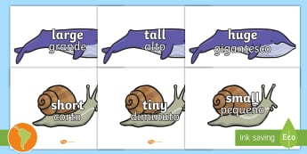 Size Words on Whales and Snails A4 Display Posters - US English/Spanish (Latin) US English/Spanish (Latin) - Size Words on Whales and Snails -adjectives, VCOP, describing, display, poster, , tasty, scary, ugly