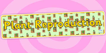 Plant Reproduction Display Banner - plants, green plants, plant reproduction, plant reproduction banner, plants banner, plant growth display, ks2 science