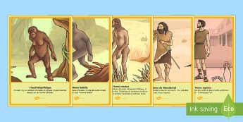 Affiches : Les hominidés - préhistoire, prehistory, le paléolithique, âge de pierre, stone age, hominidés, hommes préhisto