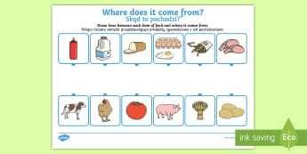 Where Does Food Come From? Activity Sheet English/Polish - Where Does Food Come From Worksheet - food,work sheet, where does food come from, origin of food, co