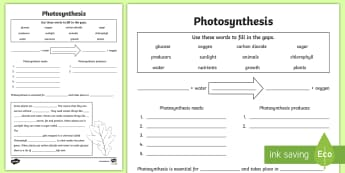 Photosynthesis Worksheet - photosynthesis, plants, growth, living things, what plants need to live, how plants eat, green plants, ks2 science, biology