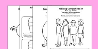 Reading Comprehension Five Key Words Activity Sheets Polish Translation - SEN/SALT, reading, inference, information, speech, language, instructions, colour, colouring, worksheet