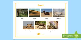 Desert Word Mat - UAE, ADEC, MOE, animals, emirates, information, non fiction, science