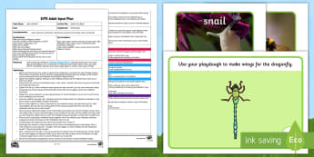 EYFS Night Party Bugs! Adult Input Plan and Resource Pack - Light and Dark, nocturnal, diurnal, minibeasts, night, day, habitat, investigate, torch, torches, li