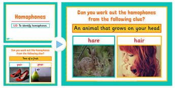 Homophones PowerPoint - homophones, literacy, english, visual aid, homphones