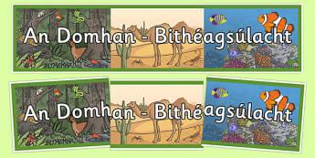 Gaeilge Irish An Domhan - Bithéagsúlacht Biodiversity Display Banner - Biodiversity, Green schools, environment, display, banner, green flag, nature, Irish, Gaeilge
