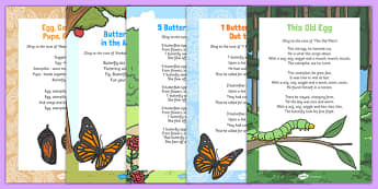 Butterfly Life Cycle Songs and Rhymes Resource Pack - caterpillar, butterfly, life cycle