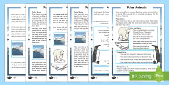 Polar Animals Differentiated Reading Comprehension Activity Arabic/English - Winter 2016/17, weather, cold, freezing, fur, insulation, polar bear, penguin, blizzard, Arctic, Ant